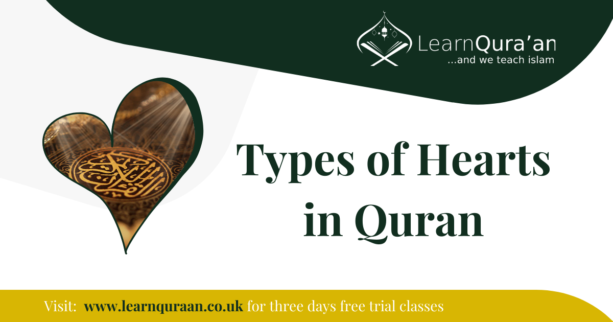 13 Types of Heart in Quran